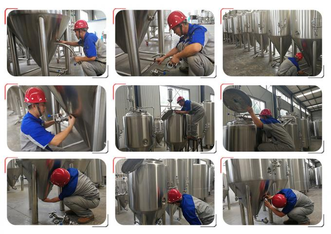 Mini Craft Brewing Equipment With Hot Water Tank , Fermentation Equipment