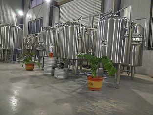 China Sus 304 Commercial Beer Brewing Systems , 200l Small Home Brewing Equipment supplier