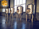 Pub Brewery Industrial Fermentation Equipment 1000L Raker And Agitator VFD